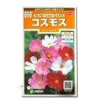 花の種 コスモス[センセーション ミックス] 2ml(メール便可能)