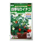 花の種 四季なりイチゴ[ワイルドストロベリー] 0.1ml(メール便可能)