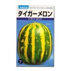 野菜の種/種子 タイガーメロン 1.5ml (メール便可能)