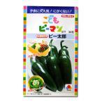 野菜の種/種子 こどもピーマン ピー太郎・ピーマン 30粒 (メール便可能)タキイ種苗