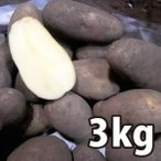 野菜・種/苗[春植えジャガイモ種芋]北海道産 メークイン じゃがいも種芋・生もの種 量り売り3kg【12月中旬頃発送】
