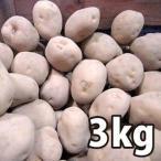 野菜・種/苗[春じゃがいも種芋]北海道産 男爵 男しゃく じゃがいも種芋・生もの種 量り売り3kg