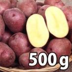 野菜・種/苗[春ジャガイモ種芋]北海道産 インカルージュ 北海98号 じゃがいも種芋・生もの種 量り売り500g