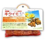 野菜・種/苗 キクイモ・菊芋 種芋・生もの種 200g