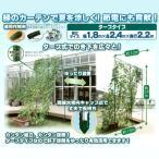 つる植物 栽培セット[グリーン]タープタイプ 幅1.8×高さ2.4×奥行2.2m 緑のカーテン/みどりのカーテン 農業資材