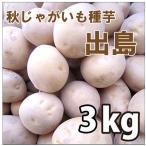 野菜・種/苗 [秋じゃがいも種芋]じゃがいも種芋 出島・生もの種 量り売り3kg 【7月下旬頃より順次発送】