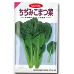 野菜の種/種子 ちぢみこまつ菜・小松菜・コマツナ 5..2ml (メール便可能)