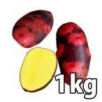 野菜・種/苗[春じゃがいも種芋]グランドペチカ じゃがいも種芋・生もの種 量り売り1kg