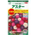 花の種 アスター[あずみ 混合]ボリュームパック 1.8ml(メール便可能)