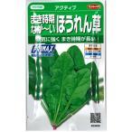 野菜の種/種子 アクティブ まき時期なが〜いほうれん草・ほうれんそう 30ml (メール便可能)サカタのタネ