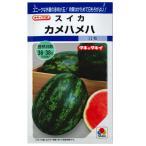 野菜の種/種子 カメハメハ ・スイカ すいか 西瓜 11粒 (メール便可能)タキイ種苗