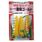 野菜の種/種子 Sweets 恵味ゴールド とうもろこし 約200粒 (メール便発送)【12月下旬頃発送】