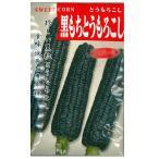 野菜の種/種子 黒もちとうもろこし トウモロコシ もろこし 40ml (メール便可能)