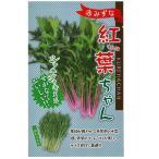 野菜の種/種子 紅葉(くれは)ちゃん 水菜・赤みずな 5ml (メール便発送)