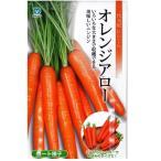 野菜の種/種子 オレンジアロー ニンジン  にんじん キャロット 人参 320粒 (メール便発送)