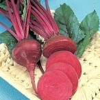 野菜の種/種子 デトロイト ダークレッド・食用ビーツ 1dl(メール便可能)タキイ種苗