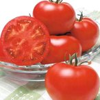 野菜の種/種子 桃太郎ギフト・トマト 50粒(メール便発送)タキイ種苗