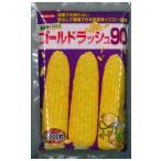 野菜の種/種子 ゴールドラッシュ 90・とうもろこし 2000粒 (大袋) サカタのタネ 種苗