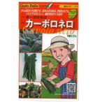 野菜の種/種子 カーボロネロ 黒キャベツ  イタリア野菜  40粒 (メール便可能)