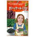 野菜の種/種子 カリーノケール・ミスタ  イタリア野菜  40粒 (メール便発送)