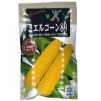 野菜の種/種子 ミエルコーン89 ・とうもろこし トウモロコシ 200粒 (メール便発送)【12月下旬頃発送】