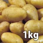 野菜・種/苗[春ジャガイモ種芋] グウェン Gwenne  じゃがいも種芋・生もの種 量り売り1kg【12月20日頃より順次発送】