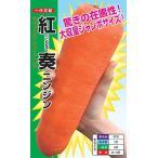 野菜の種/種子 紅奏・べにかなで ニンジン にんじん 人参 2dl (メール便発送)ナント種苗