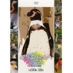 【中古】どうぶつえんへいこう『有袋類・鳥類』 b6684/MRDD-015【中古DVDレンタル専用】