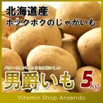 北海道産男爵いも5kg/じゃがいも/ジャガイモ/いも/だんしゃく/ニセコ/5キロ/送料無料