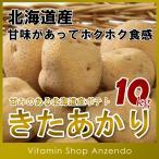 北海道産きたあかり10kg/じゃがいも/ジャガイモ/いも/キタアカリ/ニセコ/10キロ/送料無料