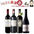 ワイン ワインセット ソムリエおすすめ お手頃チョイス 赤ワイン バラエティ 4本セット 赤ワインセット 送料無料 北海道 沖縄除く