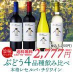 ワイン ワインセット 単一品種チリワイン飲み比べ4本セット チリワイン 赤ワイン 白ワイン 辛口