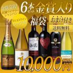 ワインセット 2017年初売り 厳選 シャンパンも入ったワイン福袋6本セット(松) 送料無料