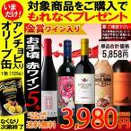 7月末迄期間限定&おまけ付 ワインセット 送料無料 お手頃ワイン4本とメダル受賞ワイン1本の「赤ワイン」5本セット