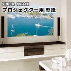 のりなし のり付き壁紙 映画館にする壁紙 スクリーン用 シンコールBA6529-6530