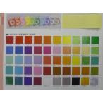 単色折り紙 片面おりがみ アイアイカラー 100枚入り 一般色48色 150×150mm