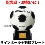 モルテン(molten) サインボール サッカーボール 金色 F2P500 置き台とプレート付 記念品