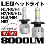 次世代純白光炸裂 『ブラックナイト2』 LEDヘッドライト 8000LM美白光 H4 Hi/Lo LEDフォグランプ H1 H3 H7 H8 H11 H16 HB3 HB4 選択可能 1年保証