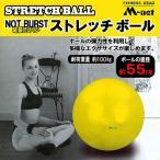 バランスボール ストレッチボール 55cm ギムニクボール フィットネスボール ダイエット ギムニクボール フィットネス ダイエット器具 インナーマッスル MN120