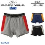 GUNZE グンゼ BODY WILD ボディワイルド BASIC for BOY'S 男児用ボクサーブリーフ(140・150・160・170cm) BJ268