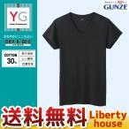 GUNZE グンゼ YG DRY&DEO for MEN'S ALL SEASON Vネック短袖Tシャツ (M・L・LLサイズ) YV0117N