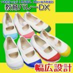 上履き 教育バレーDX(15.0cm-21.0cm)
