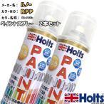 ペイントスプレー 2本セット ルノー RPP ブルードラジェ Holts MINIMIX