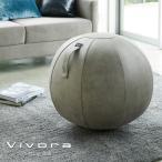 ビボラ Vivora シーティングボール ルーノ レザーレット Leatherette ライトグレー 65cm_004918 送料無料 ヴィボラ ヴィヴォラ バランスボール チェア 椅子