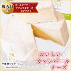 チーズ おいしいカマンベール 250g 北海道 十勝野フロマージュ お取り寄せ お土産 ギフト プレゼント 特産品 名物商品 お中元 御中元 おすすめ