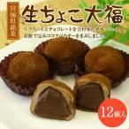 生チョコ大福 12個入り 宮城県銘菓 代引き不可 お取り寄せ …