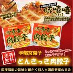 ショッピング餃子 宇都宮餃子 とんきっき フタバ食品 32個入り×2箱 お取り寄せ お土産 ギフト お中元