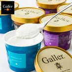 ガレープレミアムアイスクリームセット スイーツ 洋菓子 お取り寄せ お土産 ギフト プレゼント 特産品 名物商品 母の日 おすすめ