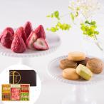 【期間限定】 「銀座千疋屋」いちごショコラ&クッキー チョコレート 個包装 詰め合わせ お取り寄せ お土産 ギフト プレゼント お歳暮 おすすめ
