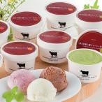 アイス ギフト アイスクリーム 熊本阿蘇山麓ジャージー牛アイス A-JT スイーツ 洋菓子 お取り寄せ 通販 お土産 プレゼント 特産品 母の日 おすすめ